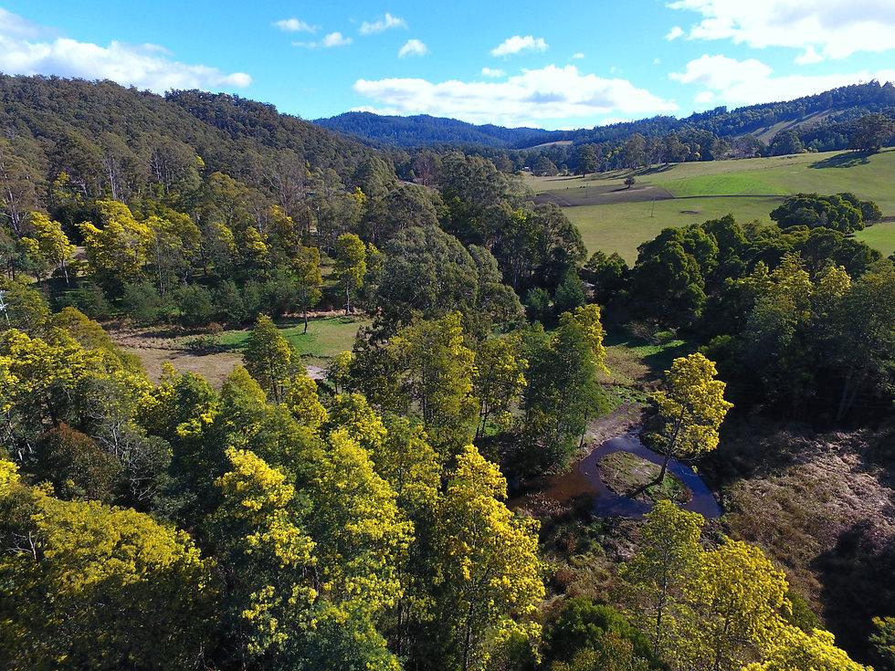 Our Farm.jpg