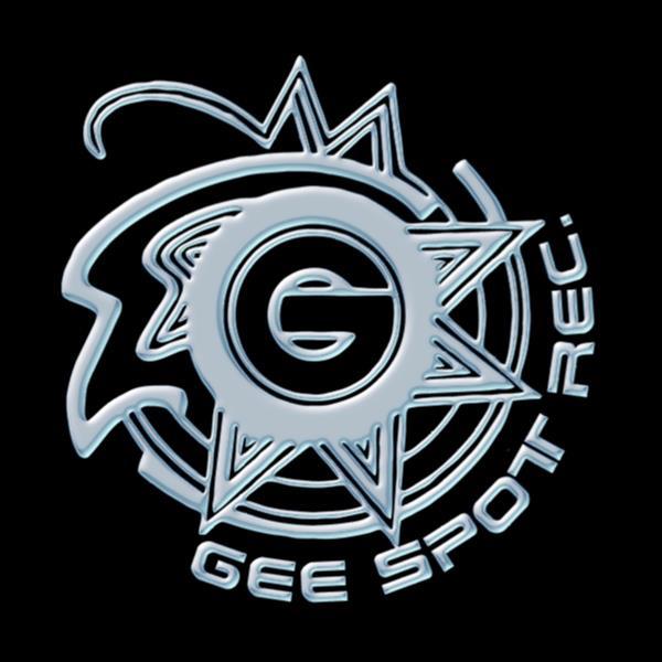 Gee van D Recordings 01.jpg