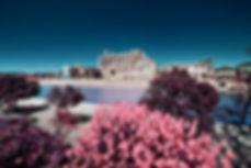 Palma_Infrared_cathedral-2000Logo.jpg