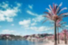 MallorcainfraredSoller_2000Logo.jpg