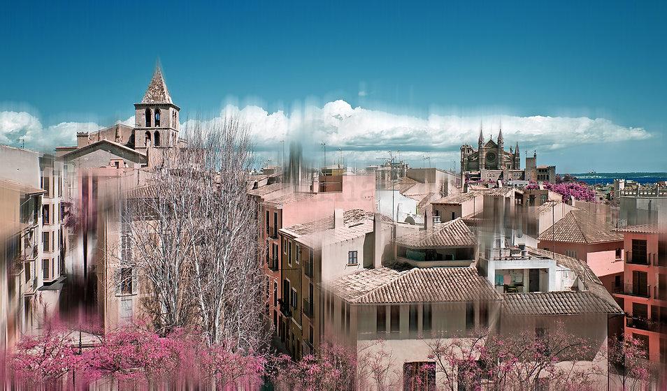 PalmaInfraredRooftops-2000Logo.jpg