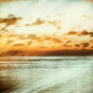 sunsetmood-1000.jpg