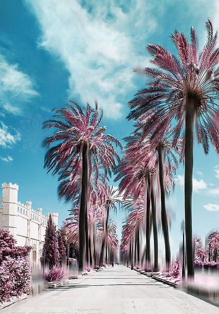 PalmaInfraredSagrera-1000Logo.jpg