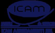 ICAM.webp