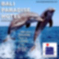 BPH Dolphin Lovina 2019.jpg
