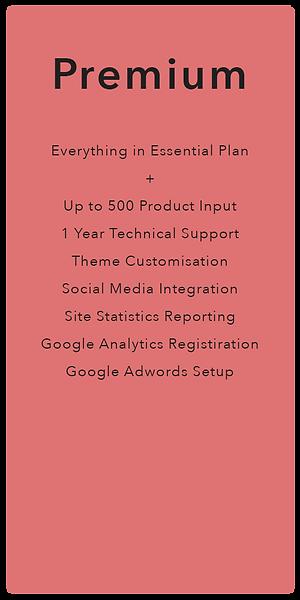 Premium Plan.png