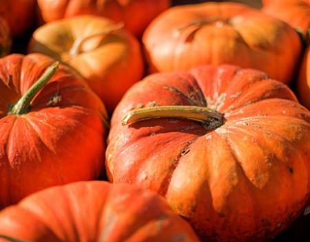 Elizabeth David's Pumpkin & Tomato Chutney