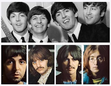 Beatle Block (No logo).png