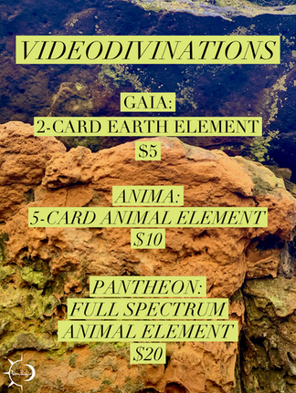 videodivinations04.png