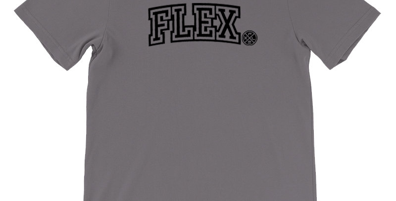 FLEX Collegiate Unisex Tee - Storm Gray