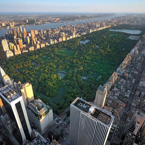 Eğer bu proje seçilseydi, New York'taki Central Park belki de bu şekilde olabilirdi