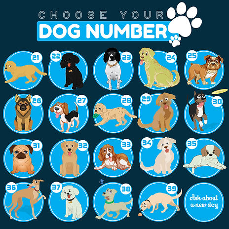 dog numbers-2-blue-revise-2.jpg