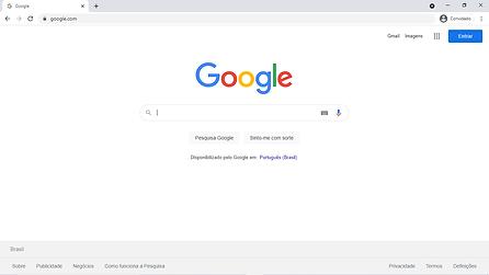 pagina google.png