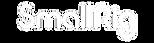 sr_logo_1609320880__65082_edited.png