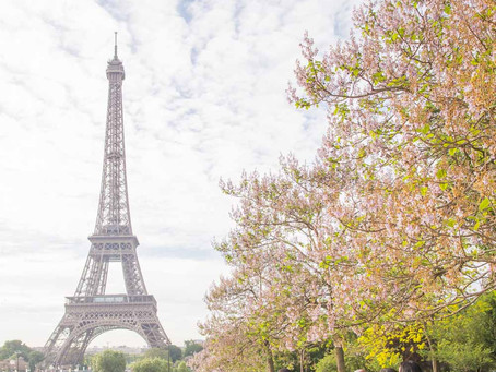 8 Tips for Planning a Dream Wedding in Paris