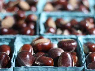 The Local Food Report: Chestnuts