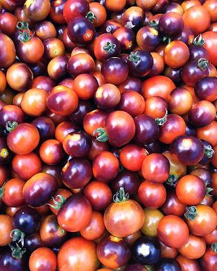 Cherry-Tomatoes-Indigo.jpg