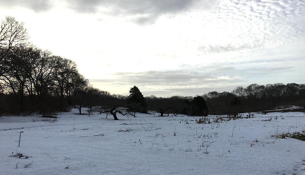 Peachtree Circle Farm Winter Sky