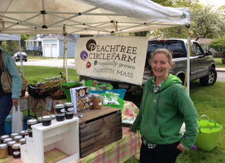 Falmouth Farmers Market Opens Today