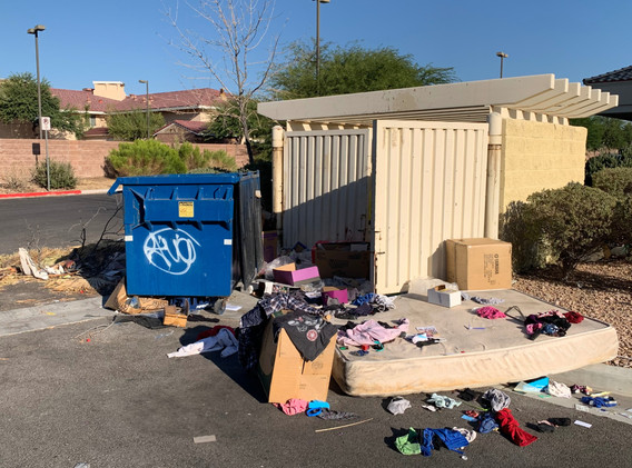 Dumpster Cleanup