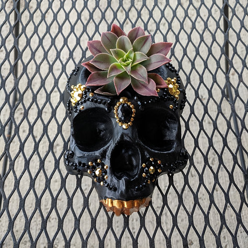 Black & Gold Gem Mini Skull