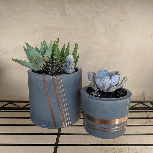 Grey/Rose Gold Pot - Medium Slim Cylinder
