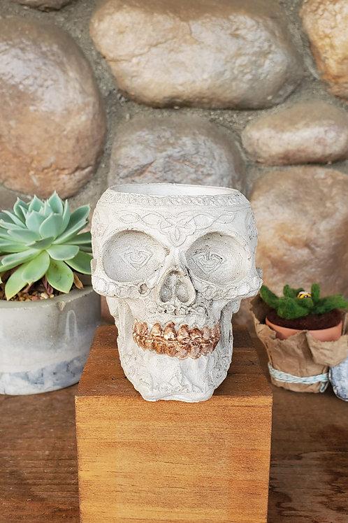 Light Grey Decorative Skull