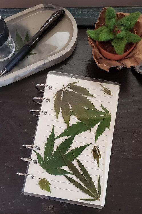 Medium Cannabis Notebook - Green