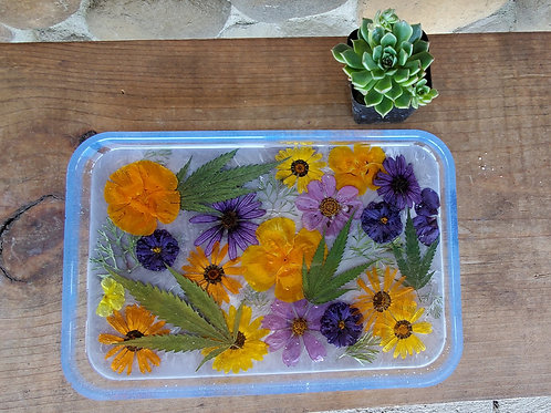 LARGE Floral & Cannabis Tray