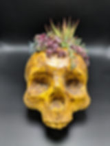 wood skull planter