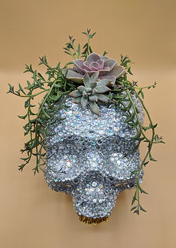 crystal skull with succulents