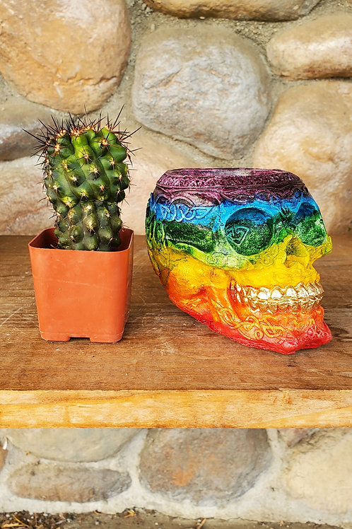 Rainbow Decorative Skull