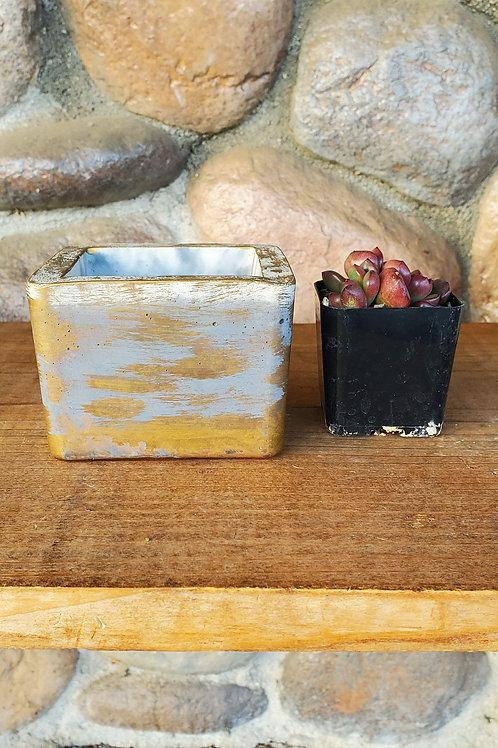 Square Cement Pot - Gold Leaf