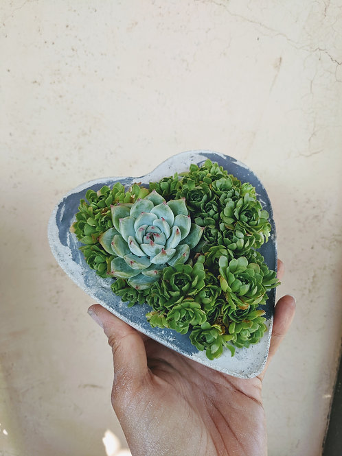 Small Marbled Cement Heart Pot