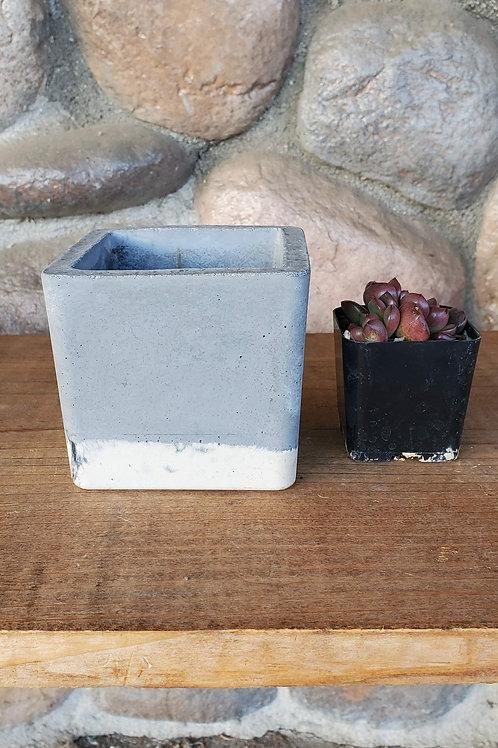 Square Cement Pot - White Bottom