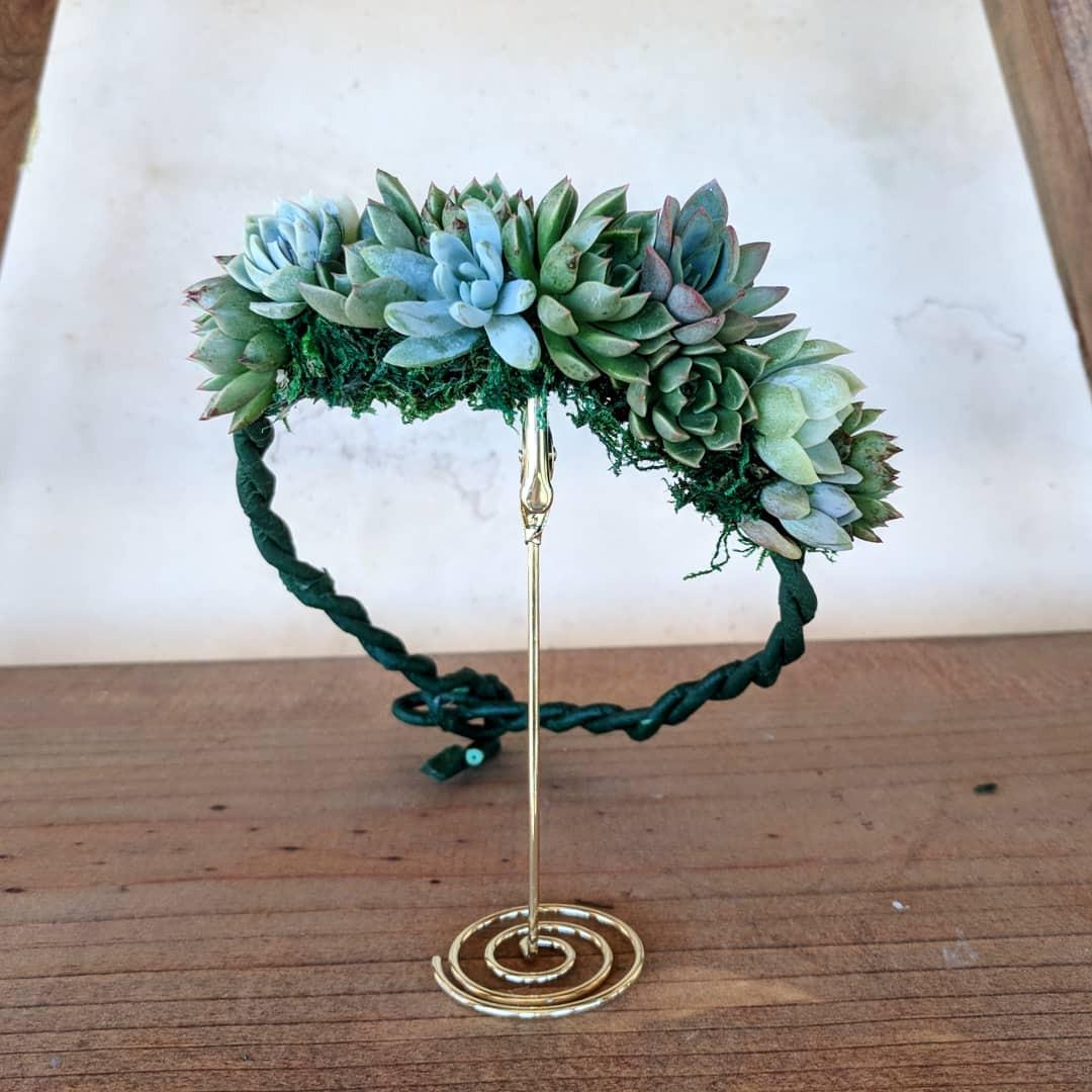 Succulent Crown