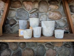 Botanical Imprint Collection