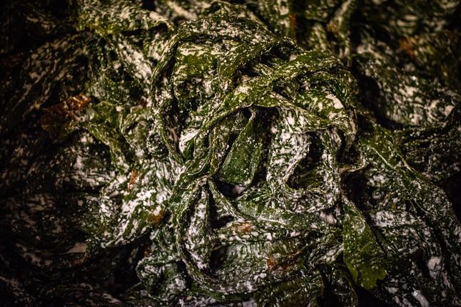 frais-sale-algues-algolesko