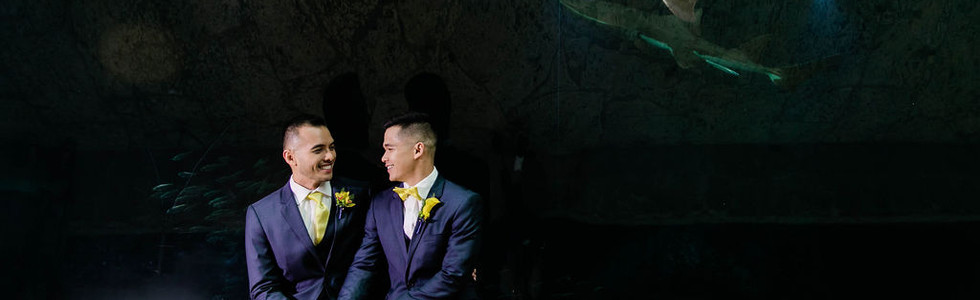 dallas lgbt weddings 2 grooms event planning tina dannel wedding coordination certified planner