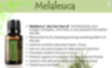 doTerra Melaenuca info.png