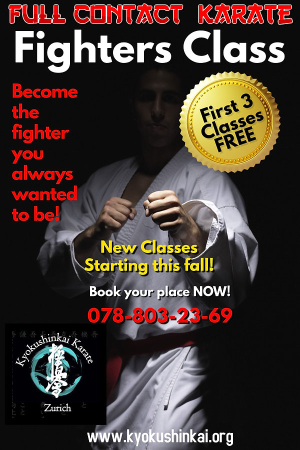 Kyokushin Karate Fighter Poster.jpg