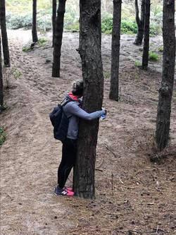 Les bains de forêt - Enlacement des arbres