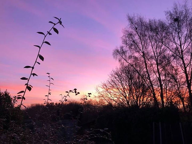 Soleil Rose du matin, contemplation de la nature