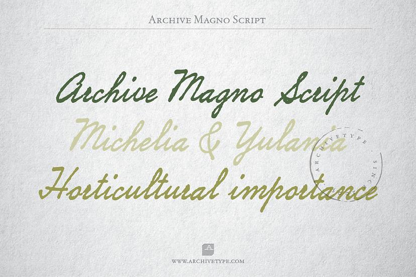 Archive Magno Script