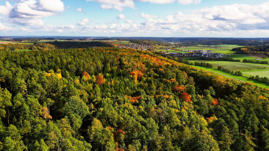 Wernsbach im Herbst 1.jpg