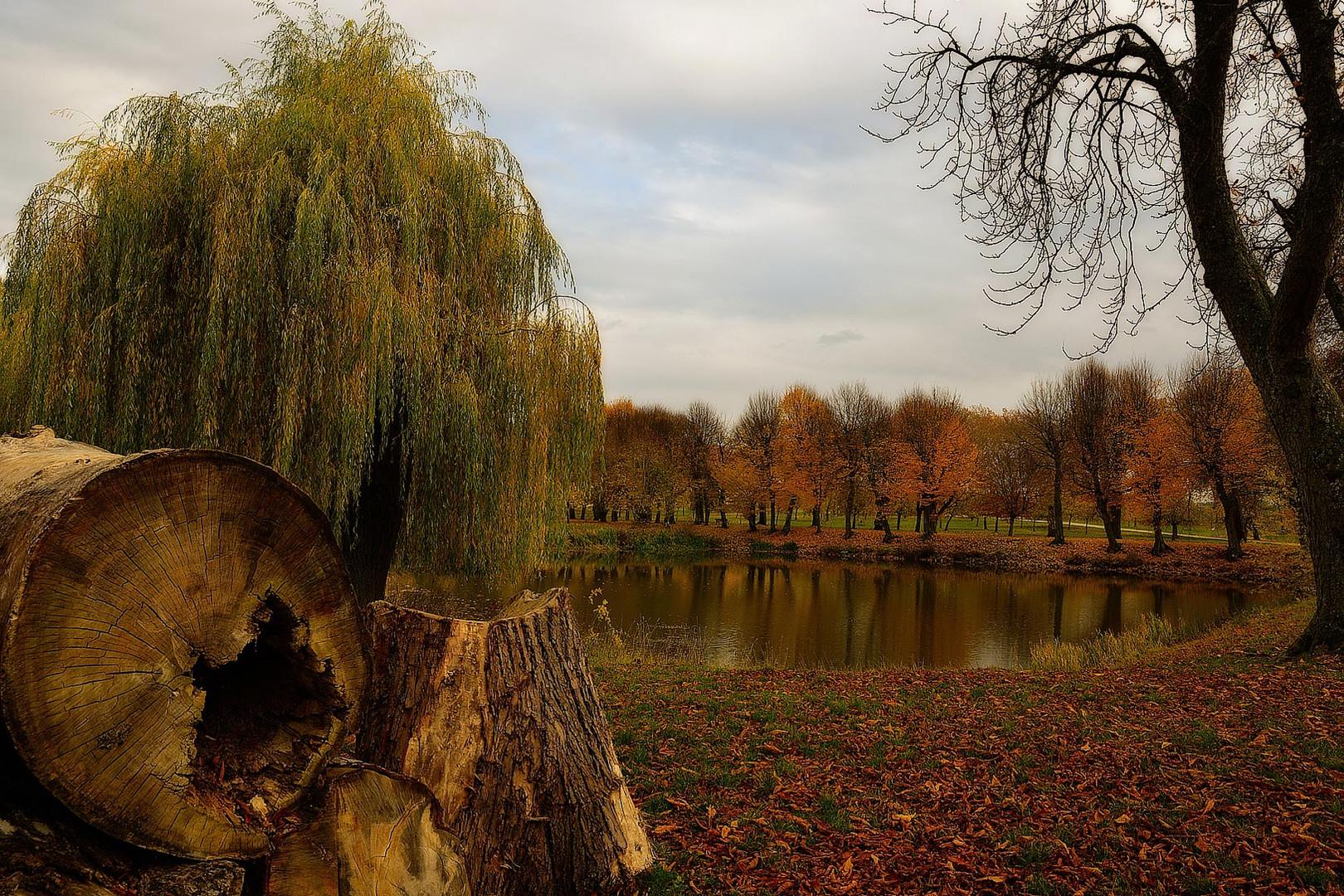 Herbst am Weiher