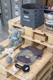 Communication globale // Boutique My Dog Factory