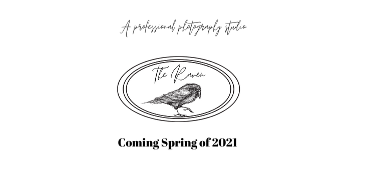 Copy of The Raven For Website.png