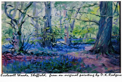 Ecclesall Woods by Art Group Pres.