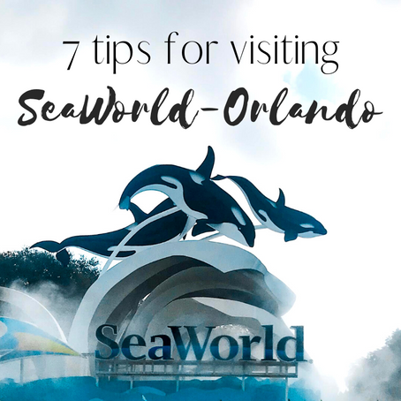 7 Tips for getting the most out of your SeaWorld Trip